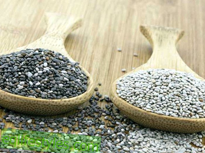 Gluten-free foods Quinoa, Chia and Teff: Better than cereals