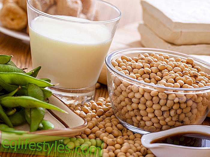 Healthy NutritionProbier's vegetable: 5 reasons why soy should end up on your plate more often