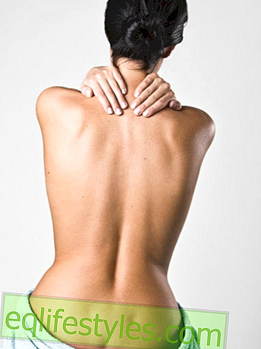 Back, head, joints: pain away forever