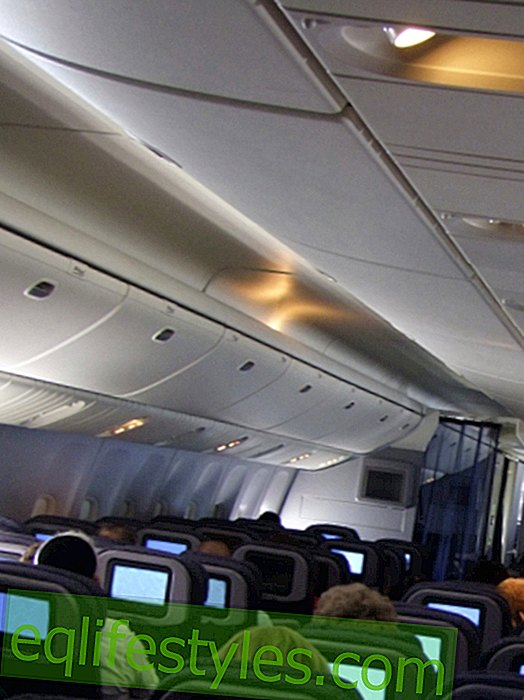 Nerve poison on the plane: how dangerous is flying really?