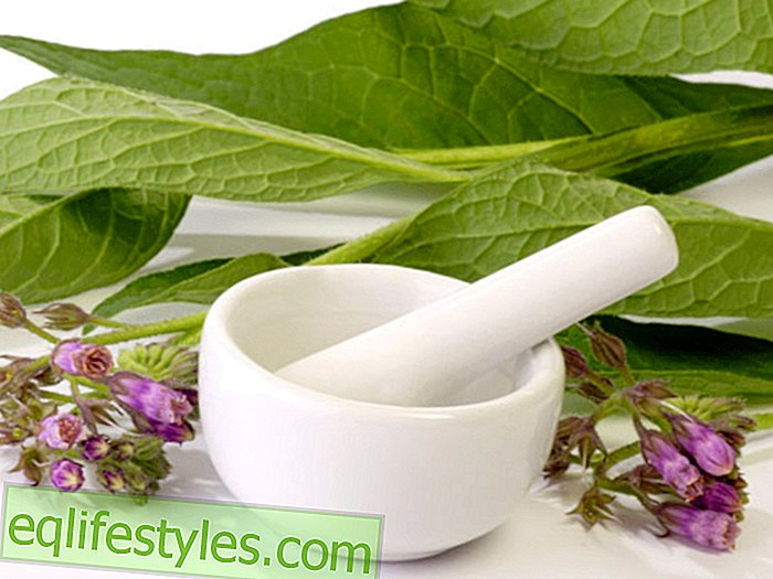 Natural medicine home remedies for osteoarthritis: what helps?