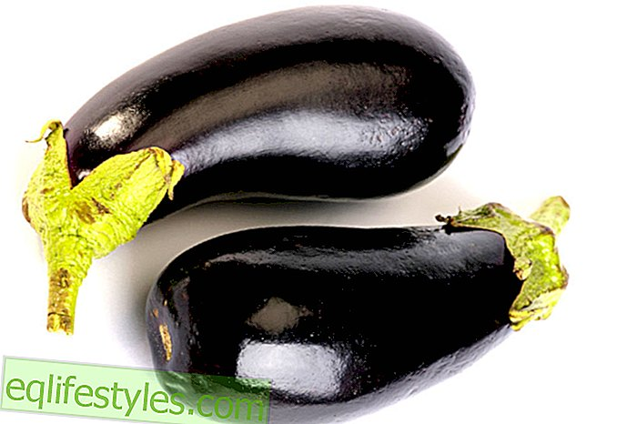 She can do this with eggplant: effect and preparation