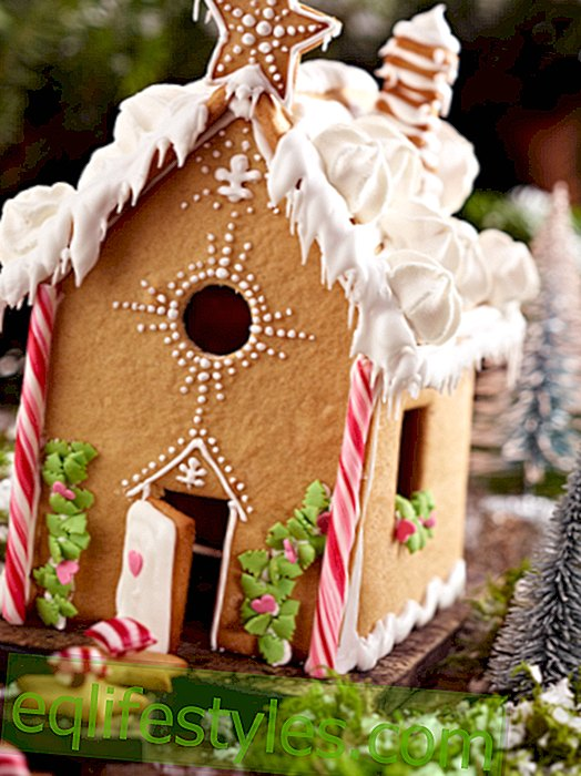 Gingerbread House Recipe: From evil witches and good fairies