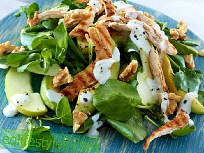 Slimming RecipesLow Carb Chicken Salad - 2-Ingredient Recipe