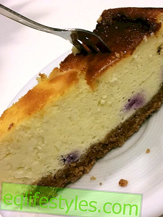 Thilo Bakes: The Perfect Blueberry Cheesecake!