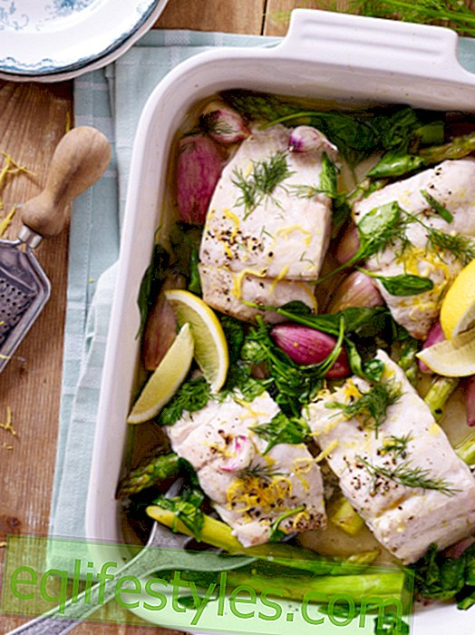 Delicious fish dishes for feasting