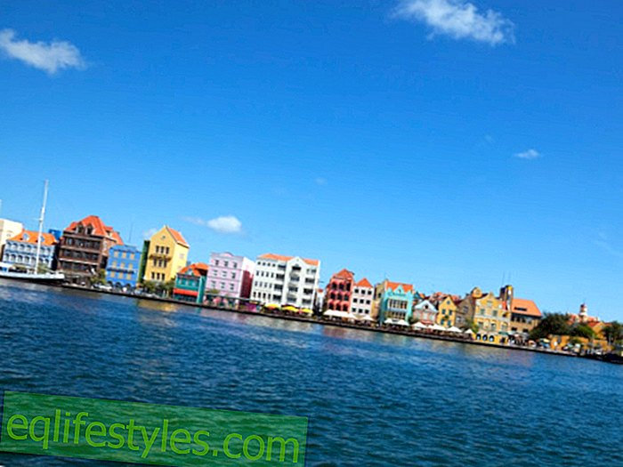 Life - Curacao: Caribbean for beginners