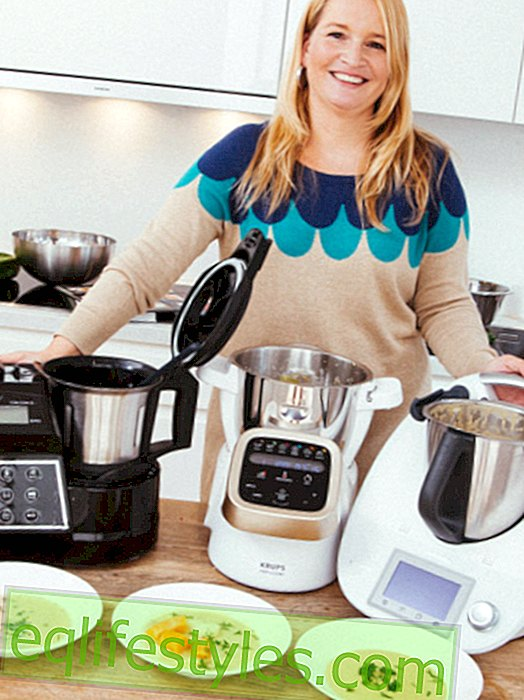 Thermomix alternatives under test: What are they good for?