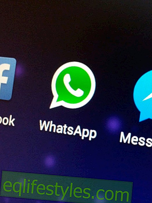 WhatsApp Web: Takto WhatsApp nyní pracuje na PC