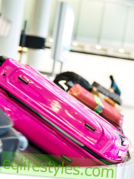 Never lose the suitcase!  6 tricks
