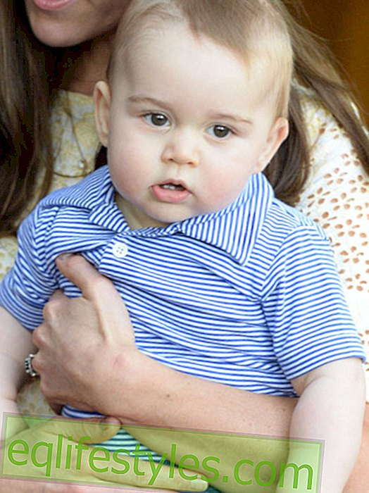 Life - Photoshop for Prince George: Cover-Panne!