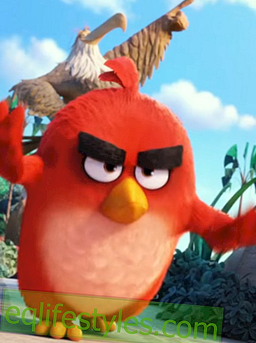 The Angry Birds are coming to the movies!