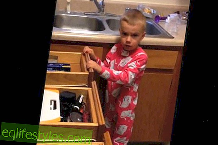 """Video: """"I ate all your Halloween sweets"""