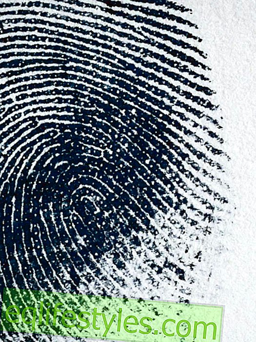 What your fingerprints say about you