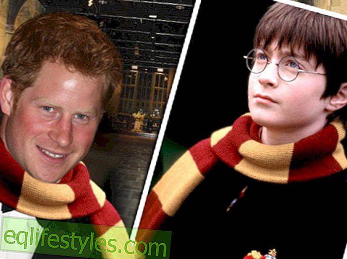Prints Harry: Harry Potteri jälgedes