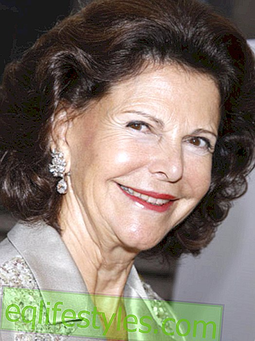 Queen Silvia: Between Sweden and the USA