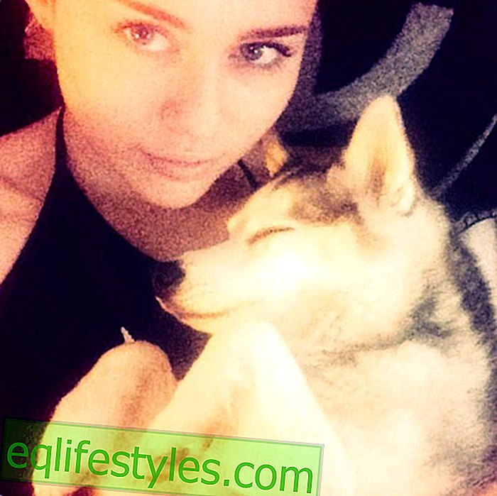 Miley Cyrus mourns for dog Floyd