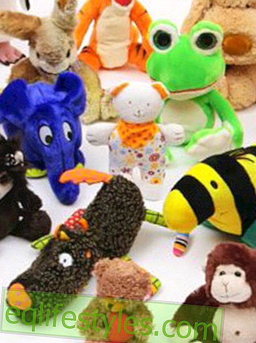 Stiftung Warentest: More than half of the cuddly toys get poor