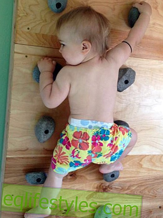 Climbing baby makes us speechless!
