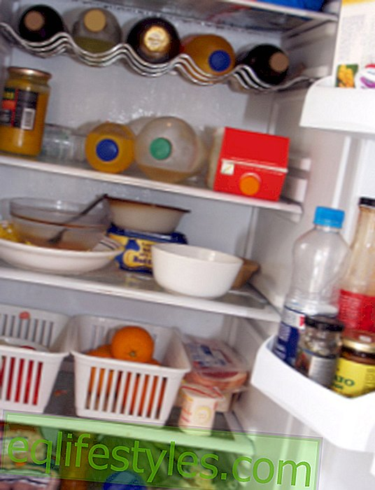 Life: To store food in the refrigerator optimally