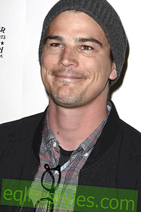 Life - Josh Hartnett falls in love with Ryan Phillipe's ex?
