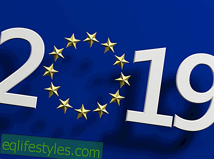Life: EU-ParliamentEuropean Election 2019: Who, when, why - all the key facts about the election