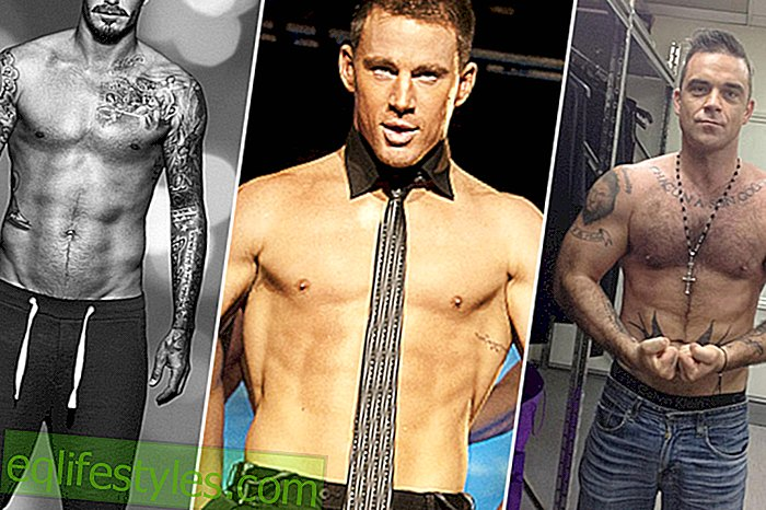 Årets hot review: The Sixpacks of the Stars