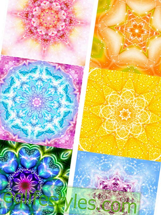 The Mandala Oracle: What is important in your life now