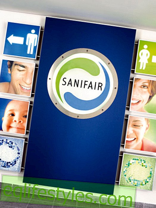 "The new corporate video of Sanifair: ""A grip in the toilet"