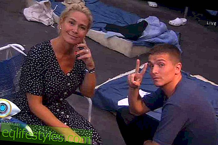 Big Brother: These are the highlights of container life