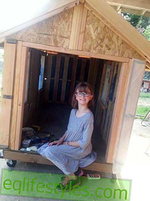 Life: 9-year-old Hailey builds house for the homeless