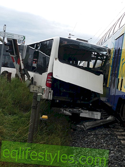 Bus driver rescues 60 children in collision with train