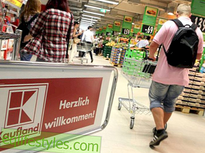 Kaufland Photo Action: With bears to the mice of the customers
