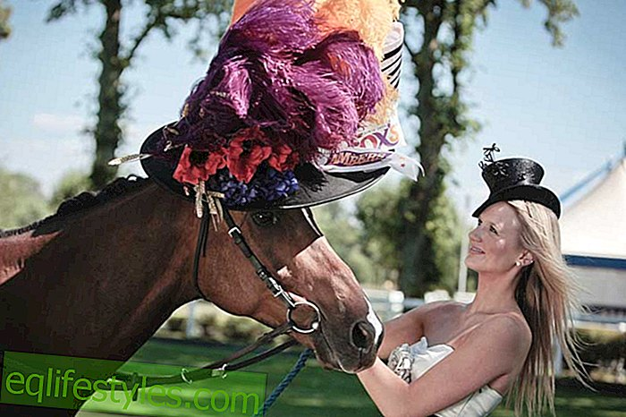 mode: Gaga-hoeden op Royal Ascot