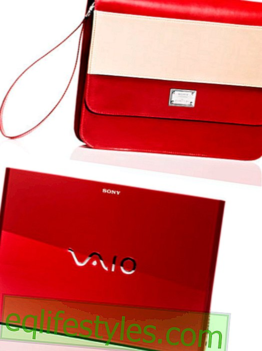 Raffle: VAIO Ultrabook from Sony and Dimitri Tasche