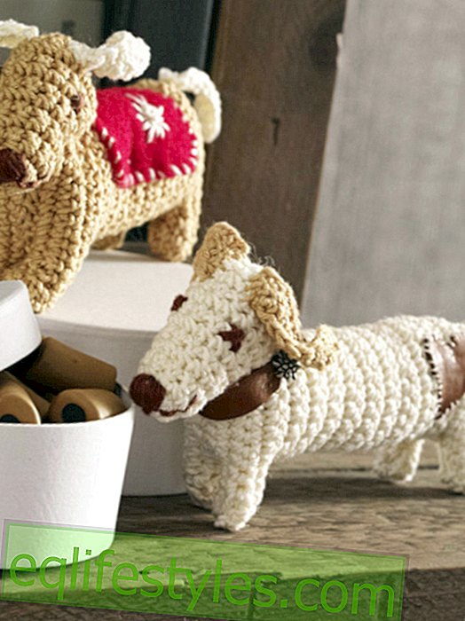 With instructions: Crochet the knitting dumbbell yourself