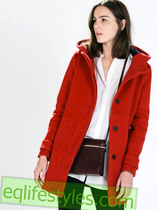 Winter coats 2014: The eight most beautiful must-haves under 100 euros