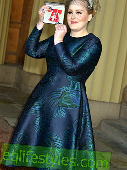 Style for strong women: Shop Adele's Plus Size Look