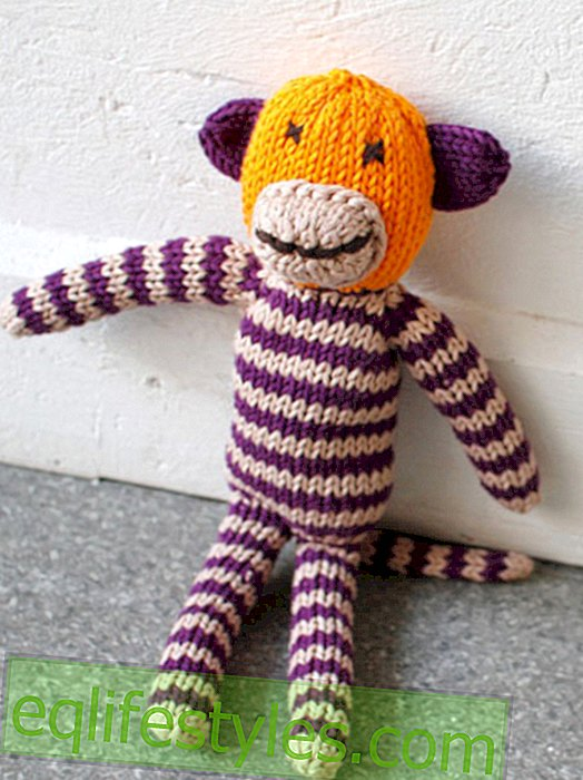 Fashion - Simple knitting instructions for a ringed monkey