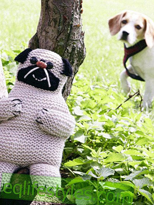 The funniest knit ideas from Pinterest - so funny!