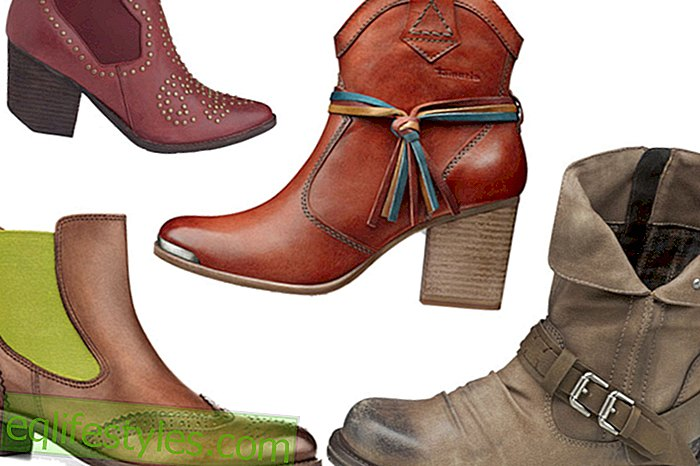 Biker ankle boots and cowboy boots