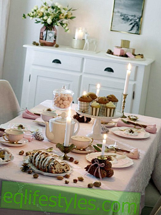live - Advent coffee: Table decoration in soft pink