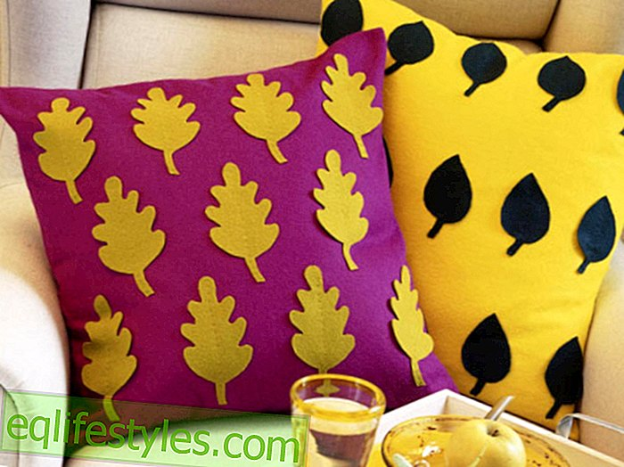 Make your own autumnal home accessories