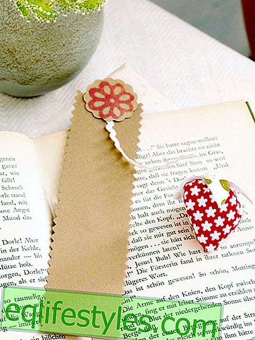 Beautiful strawberry time: instructions for a bookmark