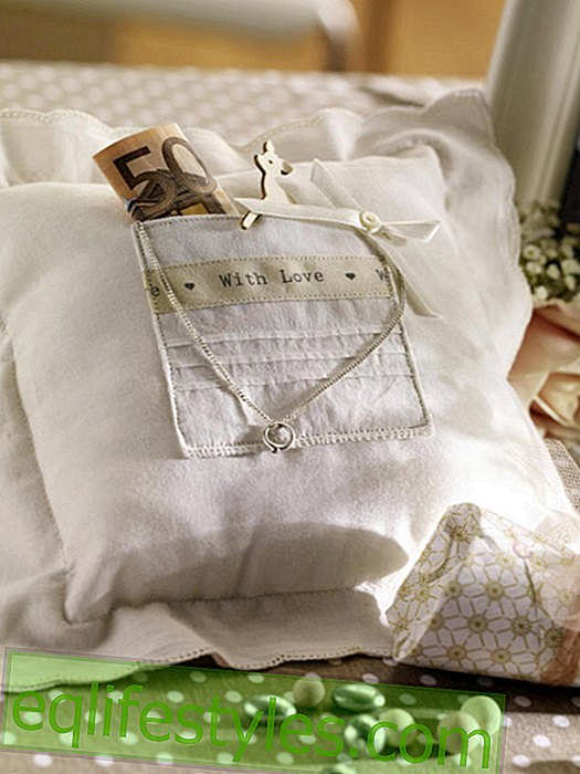 Pillow with money present