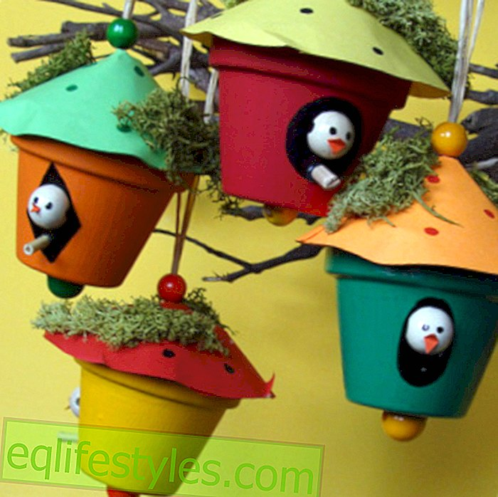 birdhouse Deco