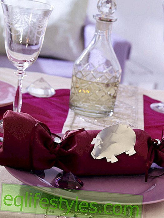 live - Napkin as a cracker with a silver pig