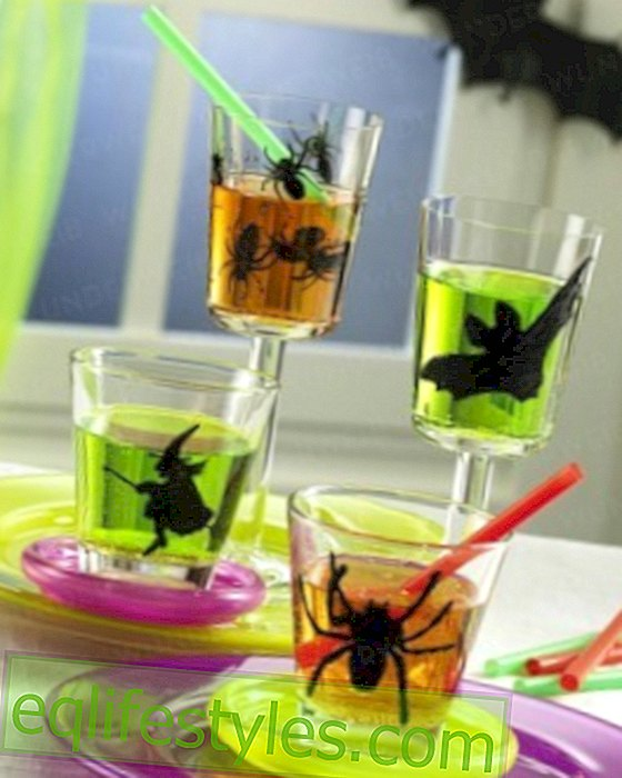 For the Halloween Party Halloween: Spice up your glasses