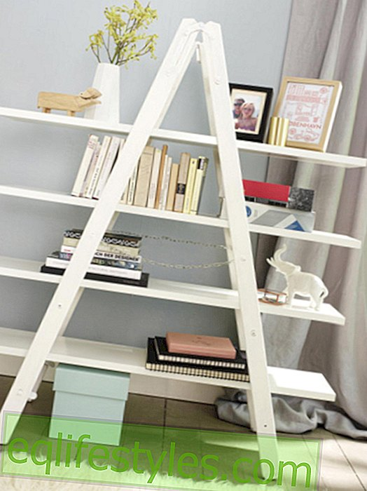 With instructions: How to build a shelf from a ladder