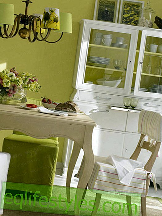 Dining room furniture with family history